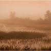 Adirondacks Tupper Lake 1 September 2020