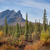 Alaska Brooks Range foothills 1 September 2021