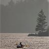 Adirondacks Forked Lake Activity 6 July 2021