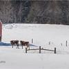 New York Madison County Farmland 3 February 2021