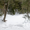 Adirondacks Essex County Owens Pond Snowshoe 1 February 2021