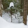 Adirondacks Essex County Owens Pond Snowshoe 4 February 2021