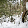 Adirondacks Essex County Owens Pond Snowshoe 2 February 2021