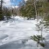 Adirondacks Essex County Owens Pond Snowshoe 13 February 2021