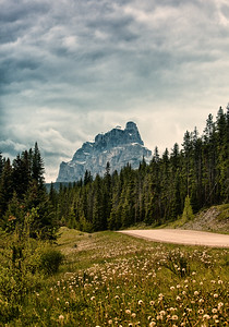 The Road To The Cliffs of Castle Mountain