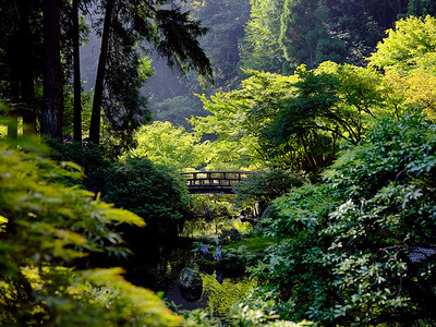 The Moon Bridge At The Portland Japanese Garden