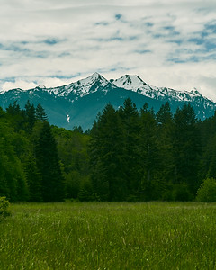 Snow Capped Peaks - Olympic National Park, Washington