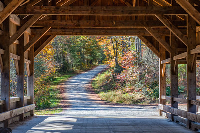 Covered Bridge; Dupont State Recreational Forest