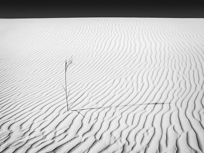 White Sands National Monument 013, 09/08/2002