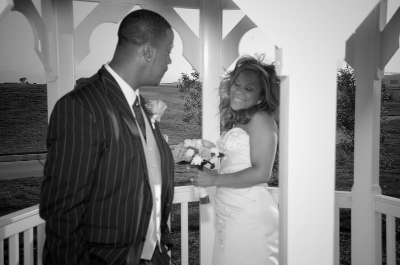 Shauna Johnson - Pierre Harper Wedding