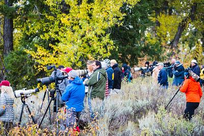 Photo Tour in the Tetons