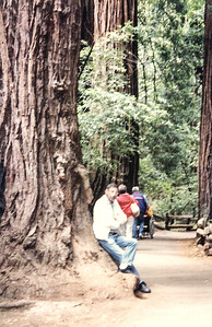 Ron in Muir Woods