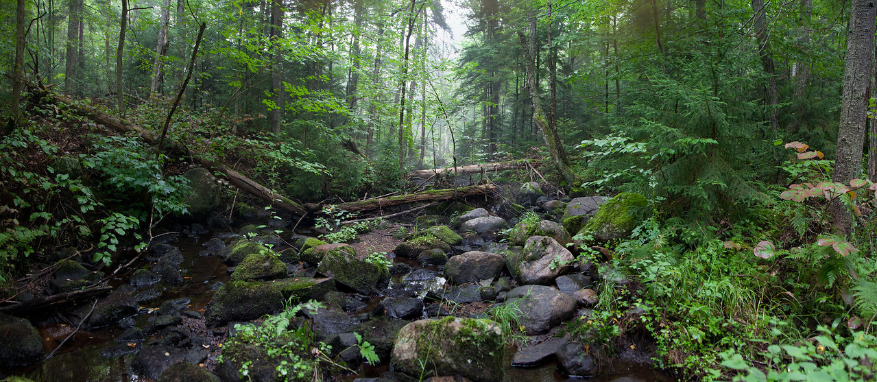 CREEK CROSSING Siamese Ponds Wilderness, Adirondak Mountains, New York, 2011 (4 frame panoramic)
