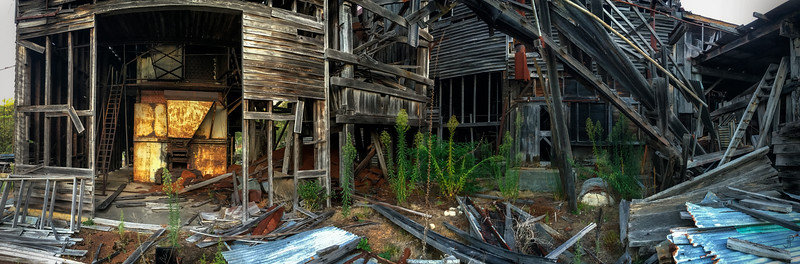 Derelict Timber Mill #05