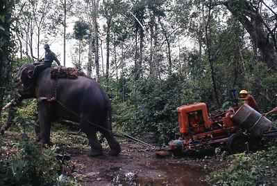 Drilling, Thailand