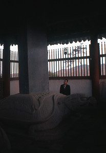 Dong-Gu Num