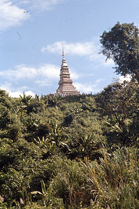 Temple on bank of Mekong River, Laos