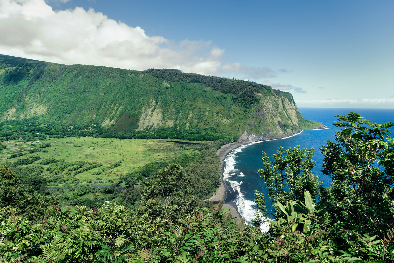 Waipio Valley Coast