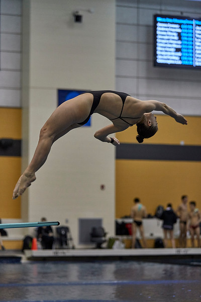 Purdue Diving NCAA Zone C Championship Day2