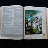 151018Linda's_Bible184