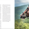 Written and photographed feature for luxury lifestyle magazine Life Refined on equestrian horse show culture.