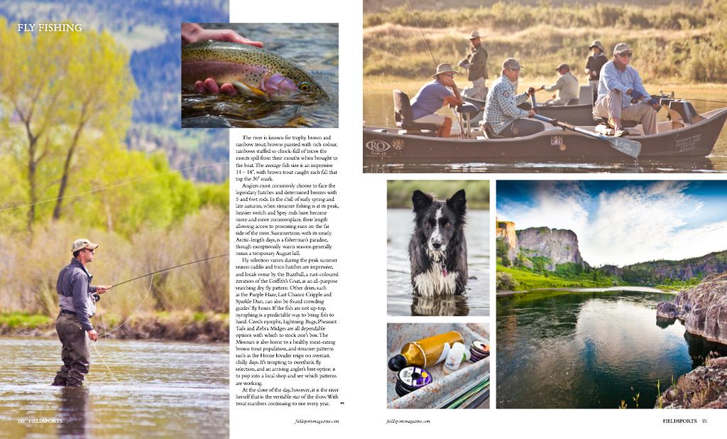 Fieldsports UK magazine, spring 2015.