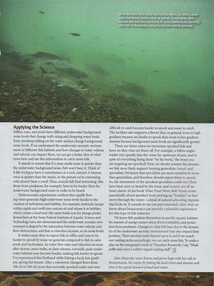 Salmon run in the Bristol Bay region of Alaska.<br /> <br /> June 2016.