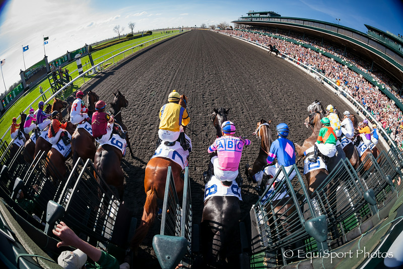 Dance with Fate (#8, Two Step Salsa) wins The toyota Blue Grass (G1) at Keeneland on 4.12.2014. Corey Nakatani up, Peter Eurton trainer, Sharon Alesia, Bran Jam Stable and Ciaglia Racing owners.