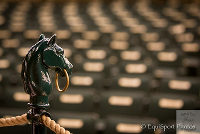 The horse head ring stands in the empty sales pavilion before the sales begin.