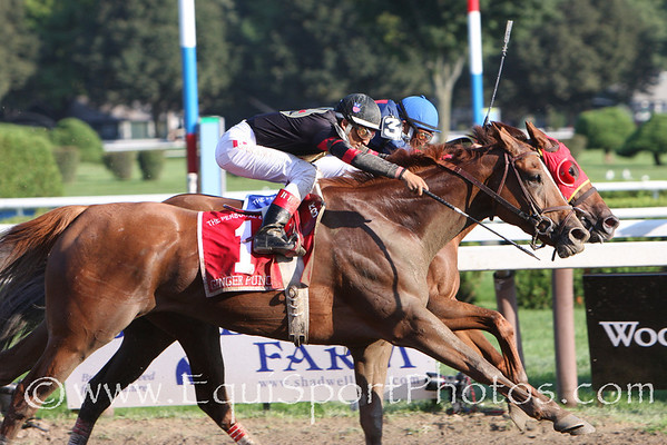 Ginger Punch (Awesome Again), Rafael Bejarano up, wins the G1 Personal Ensign at Saratoga 8.22.2008sk