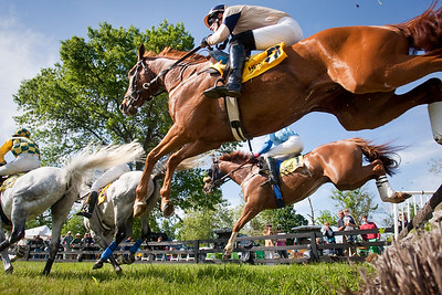 Steeplechase at the Ky. Horse Park