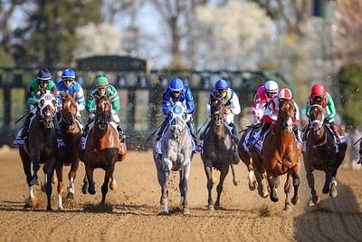 Essential Quality (Tapit) wins the Blue Grass Stakes (G2) at Keeneland on 4.3.21. Luis Saez up, Brad Cox trainer, Godolphin LLC owner.