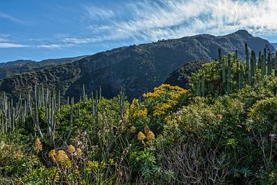 La Palma, Garafia, 2013-01-18 14:47