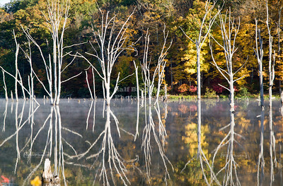 Bizarre reflections in fall at the Monksville Reservoir, Hewitt, New Jersey, USA