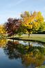 Coloful trees on Milwaukee Avenue, Buffalo Grove, Illinois, USA
