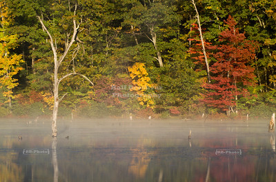 Early morning reflections at Monksville Reservoir, Hewitt, New Jersey, USA
