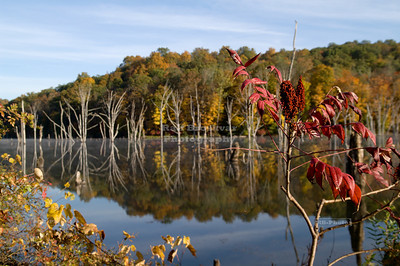 Fall reflections at Monksville Reservoir