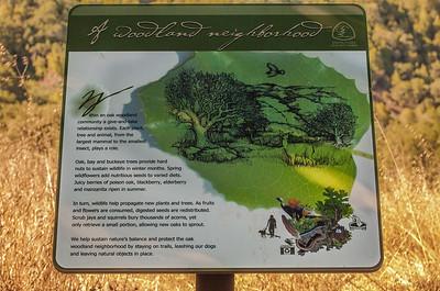 Castillero Trail - 005