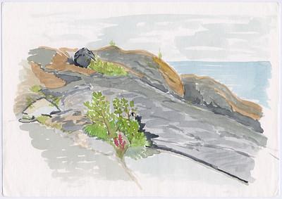 Gåsholmen, Pellinge, 1996-07-21