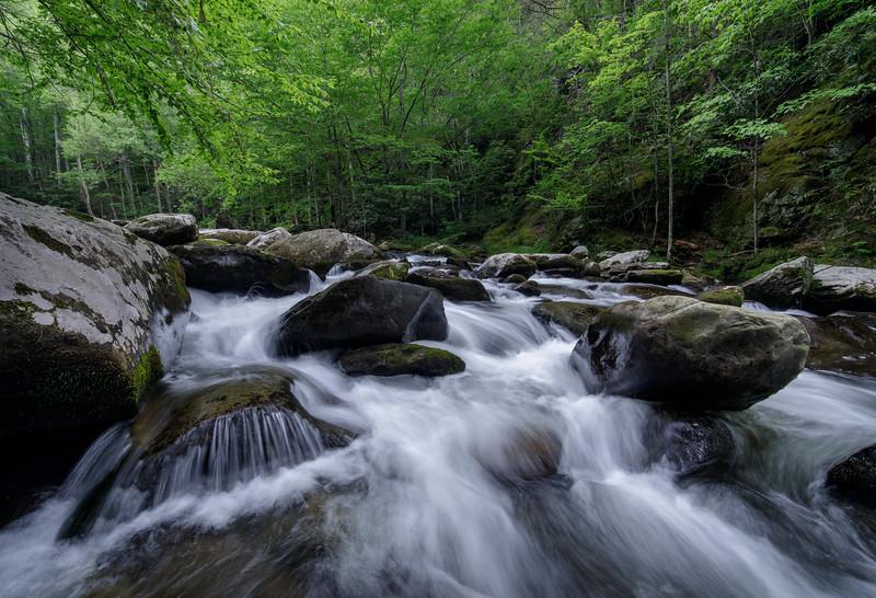 Mountain River Wild