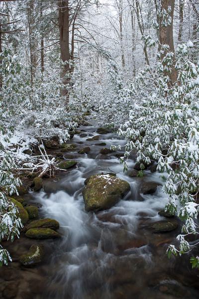 Winter's Paradise