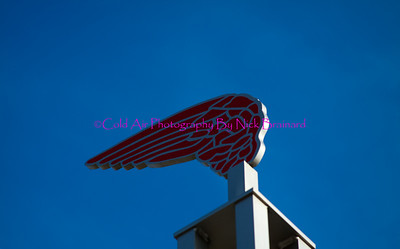 Redwing.jpg  This logo of Red Wing was perched on top of many street signs in the area.
