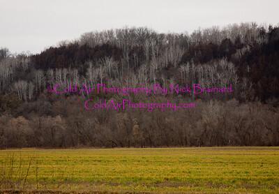 Welch_Hillside.jpg
