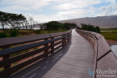 Maui Boardwalk