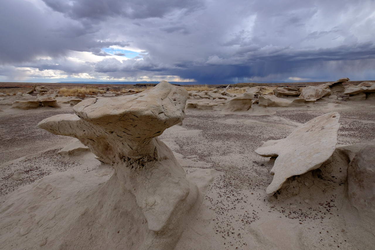Bisti Badlands, NM