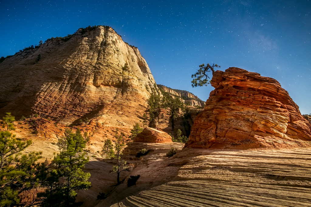 Silvery Moonlight over Zion