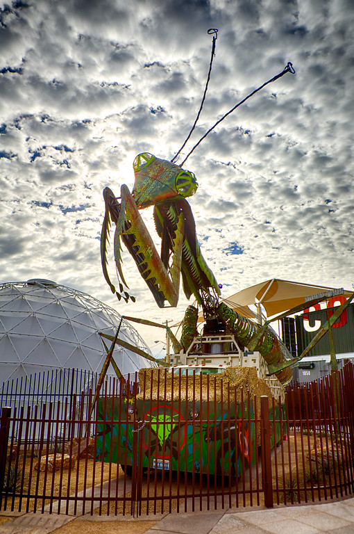 Mantis at Container Park-Downtown Las Vegas