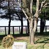 Pine Islands Gravesite