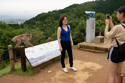 Woman being photographed with a monkey, Arashiyama Monkey Park, Kyoto 2019.