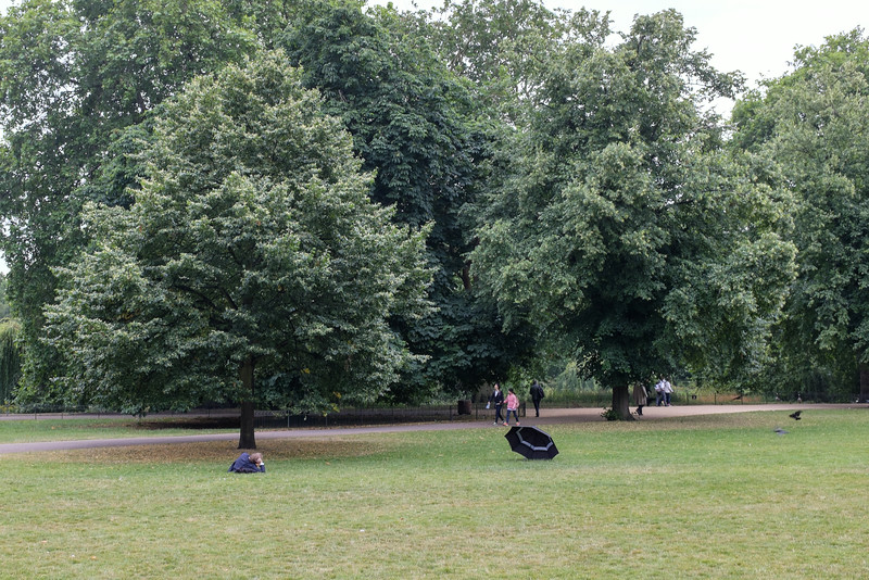 Spread out in St James Park, London, July 2014